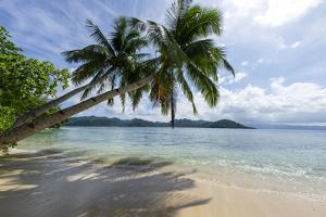 Tropical Island Beach at Matangi Island Resort, Vanua Levu, Fiji, Pacific by Louise Murray