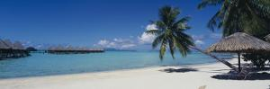 Lounge Chair under a Beach Umbrella, Moana Beach, Bora Bora, French Polynesia