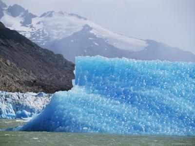Glacial Icebergs on Lago Argentina, Patagonia, Argentina, South America by Lousie Murray