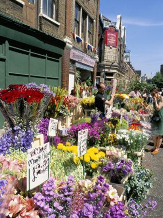 Sunday Flower Market, Columbia Road, London, England, United Kingdom by Lousie Murray