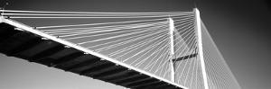 Low Angle View of a Bridge, Talmadge Memorial Bridge, Savannah, Georgia, USA