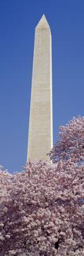 Low Angle View of an Obelisk, Washington Monument, Washington DC, USA