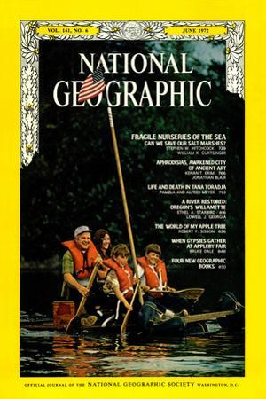 Cover of the June, 1972 National Geographic Magazine by Lowell Georgia