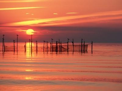 Silhouetted Fishing Net at Sunset by Lowell Georgia