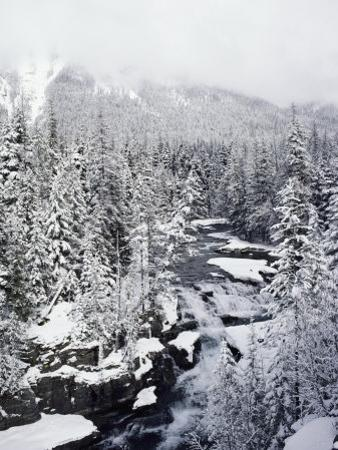 Winter View of Mcdonald Creek by Lowell Georgia
