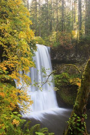 https://imgc.allpostersimages.com/img/posters/lower-south-falls-silver-falls-state-park-oregon-usa_u-L-PN6U2W0.jpg?p=0