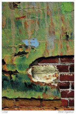 Verdant Brick by Luann Ostergaard