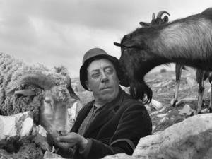 Fernandel, October 24, 1960 by Luc Fournol