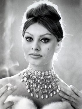 Sophia Loren by Luc Fournol
