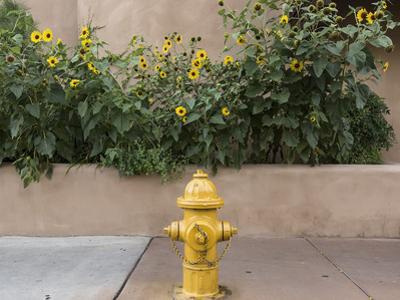 USA, New Mexico, Santa Fe. Fire Hydrant Downton Santa Fe, New Mexico