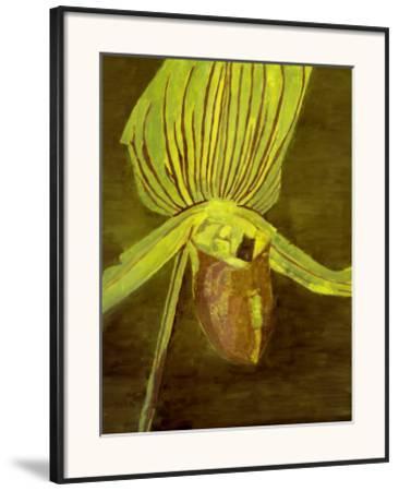 Orchid, c.1998
