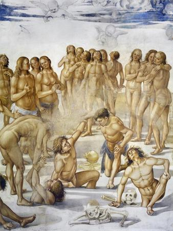 Resurrection of Flesh, from Last Judgment Fresco Cycle, 1499-1504