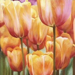Spring Tulips II by Luca Villa