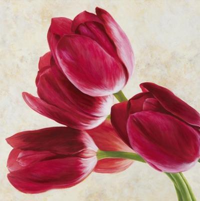 Tulip Concerto II
