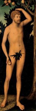 Adam, after 1537 by Lucas Cranach the Elder