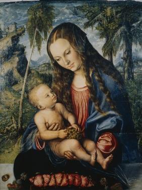 Madonna under the Fir Tree, C.1510 by Lucas Cranach the Elder