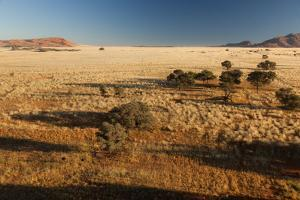 View of the Savanna. Africa. Namibia. by Lucas de Max