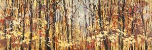Nel bosco assolato by Lucas