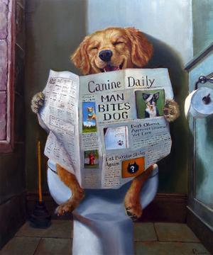 Dog Gone Funny by Lucia Heffernan