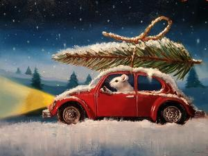 Tis The Season by Lucia Heffernan