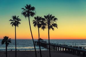 Palm Trees at Manhattan Beach. Vintage Processed. Fashion Travel and Tropical Beach Concept. by lucky-photographer
