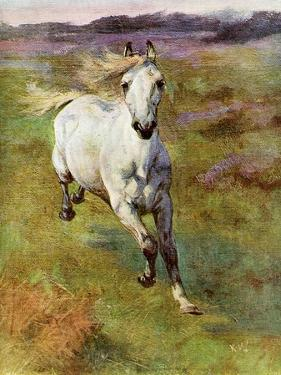Study from Life for Colt Hunting in the New Forest, 1899 by Lucy Elizabeth Kemp-Welch