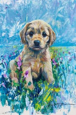 Cocker Spaniel Puppy Love by Lucy P. McTier