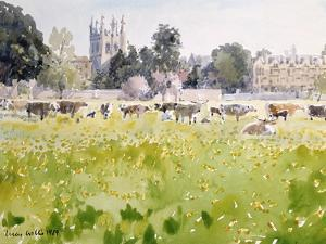 Looking across Christ Church Meadows, 1989 by Lucy Willis