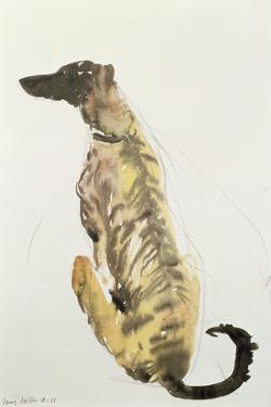 Lurcher Sitting, 1988 by Lucy Willis
