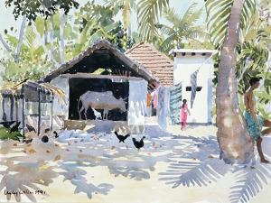The Backwaters, Kerala, India, 1991 by Lucy Willis