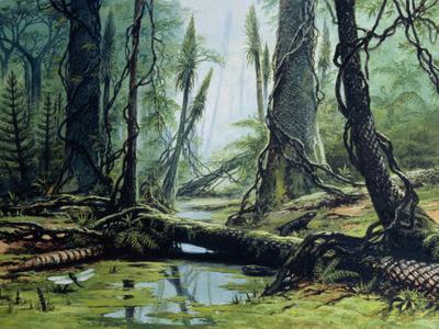 Artist's Impression of a Carboniferous Forest.