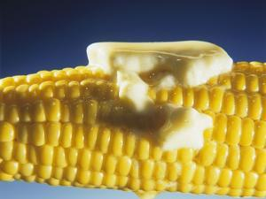 Cooked Corn on the Cob with Melting Butter by Ludger Rose