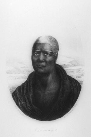 Kamehameha I, Hawaii, 1816 by Ludwig Choris