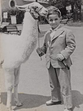 Baby at the Zoo with a Llama by Luigi Leoni