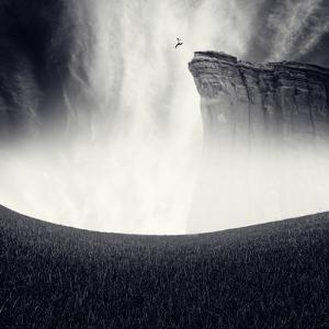 Libre by Luis Beltran