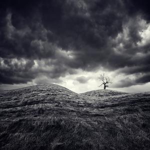 So Lonely by Luis Beltran