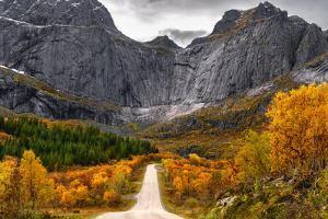 Road to the Wall by Lukasz Winiarski