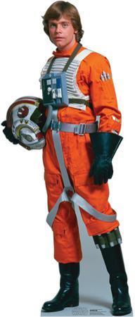 Luke Skywalker Rebel Pilot