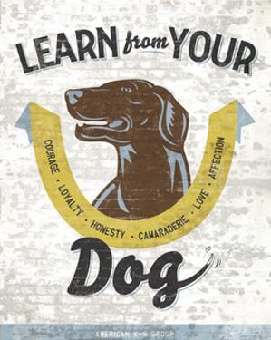 Learn From Your Dog by Luke Stockdale