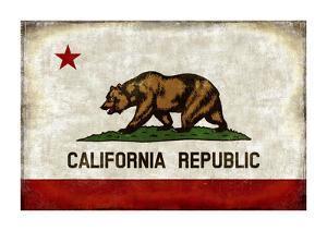 The California Republic by Luke Wilson