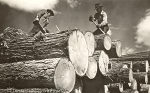 Lumber is King, North Idaho