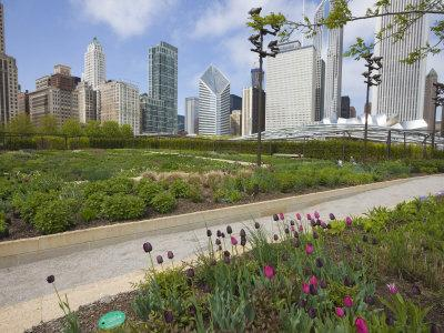 https://imgc.allpostersimages.com/img/posters/lurie-garden-millennium-park-chicago-illinois-united-states-of-america-north-america_u-L-P7NWN40.jpg?p=0