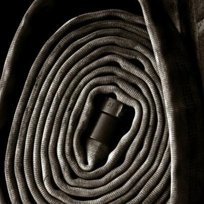 Rolled Hose by Lydia Marano