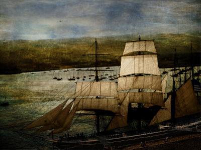 Safe Harbor by Lydia Marano