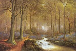 Bluebell Walk by Lyndall Forse