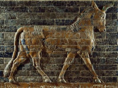 A Glazed Relief Depicting a Bull from the Ishtar Gate in the Ancient City of Babylon in Iraq by Lynn Abercrombie