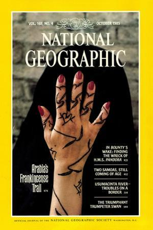 Cover of the October, 1985 National Geographic Magazine by Lynn Abercrombie