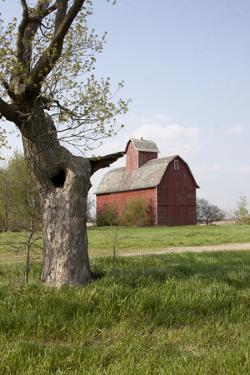 Red Corn Crib in Mid-May, Genoa, Illinois, USA by Lynn M. Stone