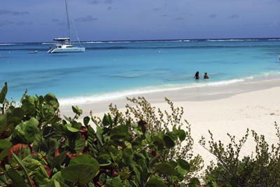 Swimming the Waters of Prickly Pear Island with Festiva Sailing Vacations
