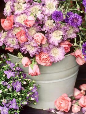 Summer Flowers in Bucket, Rosa, Scabiosa, Centaurea, Campanula by Lynne Brotchie